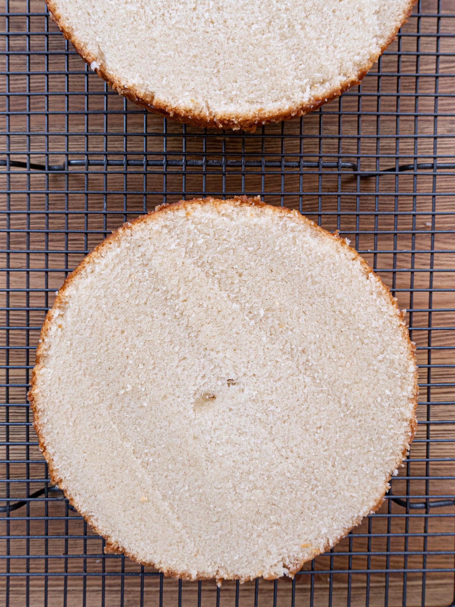 VEGAN SPONGE CAKE LAYER