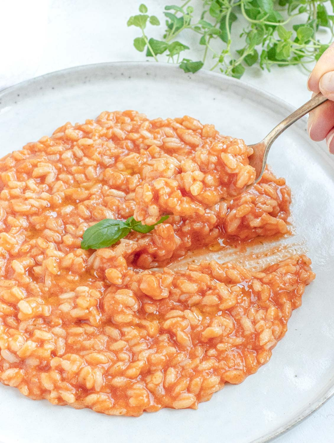 fork cutting through the creamy vegan tomato risotto