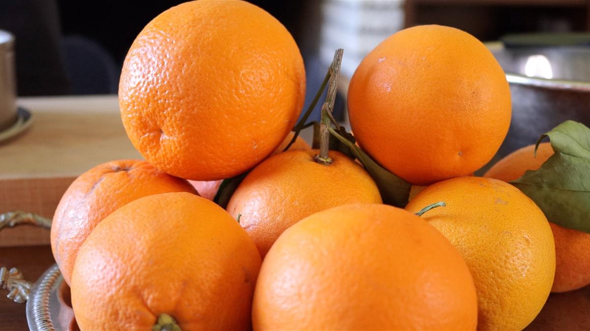 Organic Sicilian Oranges