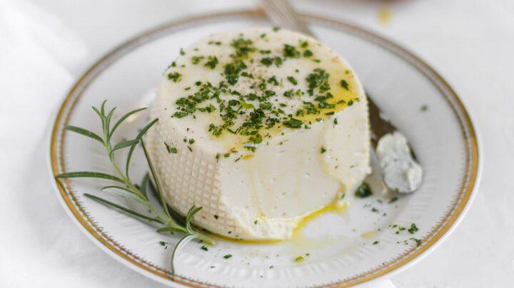 vegan stracchino - Italian cheese