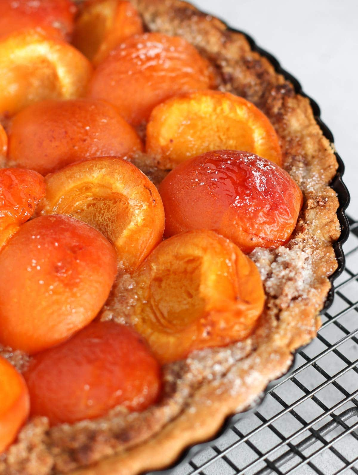 apricot tart with frangipane