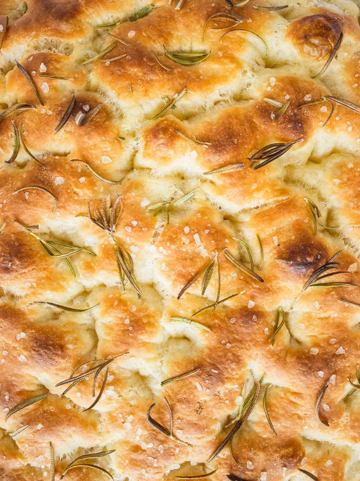 rosemary focaccia no knead